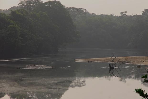 Near Mundemba, Southwest Region, Cameroon